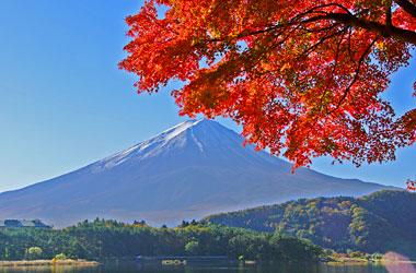 富士山とモミジ